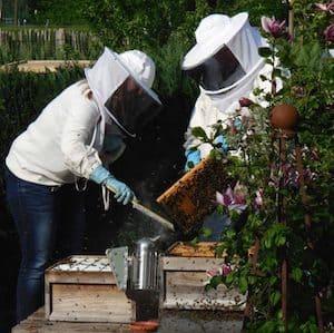 beekeeper-veil