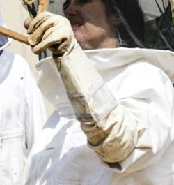 leather-long-cuff-beekeeper-glove