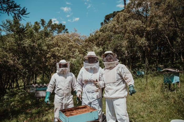 Three beekeepers standing by hive box showing their protective clothing.